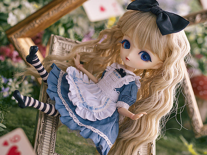 Harmonia bloom ALICE A